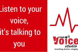 Listen to your voice, it's talking to you